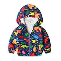 Little Boy Zipper Hooded Jacket,Cool Cartoon Dinosaur Print Long Sleeve Windproof Casual Outerwear Colorful 4T