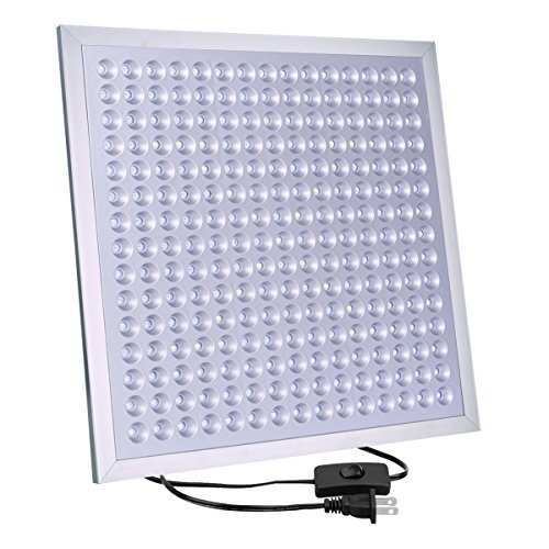 Outdoor Led Grow Lights - 4