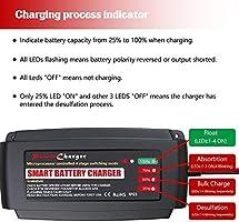 Amazon.com: Cargador de batería inteligente de 12 V, 5 A ...