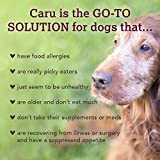 Caru - Real Beef Stew for Dogs, Natural Adult Wet