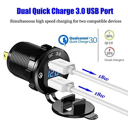 Buy blue 12v cigarette lighter plug