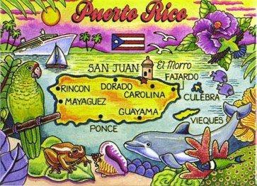 Puerto Rico Caribbean Fridge Collector's Souvenir Magnet 2.5
