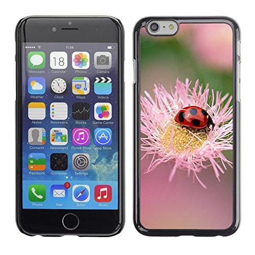 """Premio Sottile Slim Cassa Custodia Case Cover Shell // V00003534 coccinelle sur une fleur rose // Apple iPhone 6 6S 6G 4.7"""""""