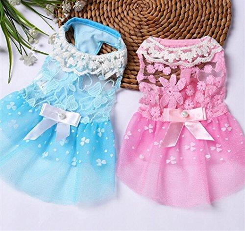 Wanyne Robe Chien Chat Jupe Arc Dentelle Vêtements Pour Animaux Confortable D'été Bleu Xl