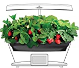 Grow Bowl and Strawberry Kit for Aerogarden Bounty Elite Gardens