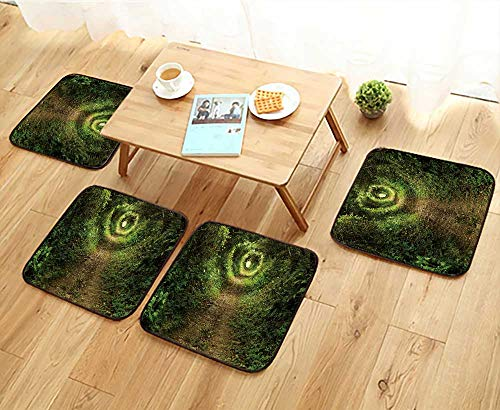 Universal Chair Cushions Tunnel Like Path Covered with Bushes and Trees with Light at The end Personalized Durable W15.5 x L15.5/4PCS Set
