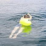 ProCase-Nuoto-Boa-Molto-Visibile-Boa-di-Sicurezza-Ultraleggera-Della-Nuotata-Tow-Float-con-Cintura-Regolabile-per-Nuotatori-in-Mare-Aperto-Triatleti-Canoeist-Snorkelers-Neonyellow