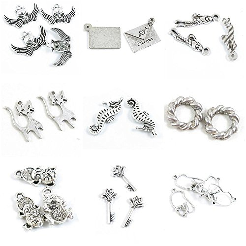 25 PCS Jewelry Making Charms Bird Pigeon Magic Skeleton Key Fortunate Toad Brave Troops Threaded Ring ()