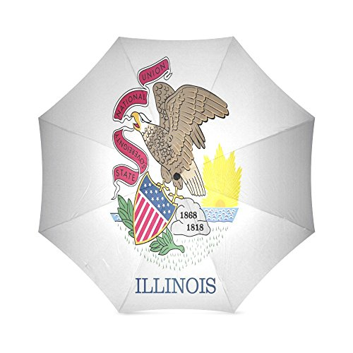 Illinois State Flag Image - 6
