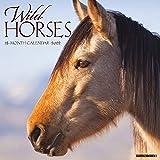 Wild Horses 2022 Wall Calendar