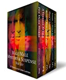 Male/Male Mystery and Suspense Box Set: 6 Novellas