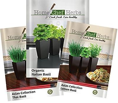 Trio Basil Seeds Packets - Italian Basil, Thai Basil, Lemon Basil Set - Italian Basil is USDA Organic Non GMO, Lemon and Thai Basil Seeds are Non GMO. Designed for Home Cooks.