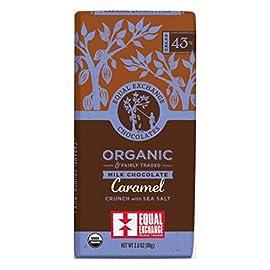 Equal Exchange Chocolate Br,Og2,Mlk,Crml,Sslt 2.8 Oz (Pack Of 12) 29 Equal Exchange Organic Dark Chocolate Caramel 95%+ Organic