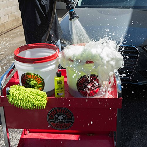 Chemical Guys CWS_301 Citrus Wash and Gloss Concentrated Car Wash (1 Gal)