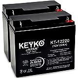KEYKO Genuine KT-12220 12V 22Ah Battery SLA Sealed Lead Acid / AGM Replacement - Nut & Bolt Terminal - 2 Pack