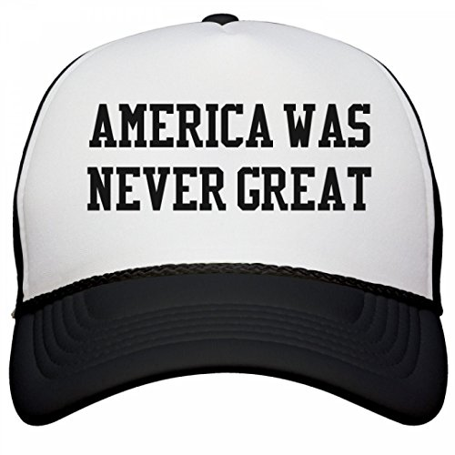 FUNNYSHIRTS ORG America Never Great Again product image