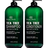 Botanic Hearth Tea Tree Shampoo and Conditioner Set - with 100% Pure Tea Tree Oil, for Itchy and Dry Scalp, Sulfate Free, Paraben Free - for Men and Women - 2 bottles 16 fl oz each