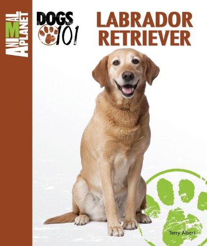Labrador Retriever (Animal Planet Dogs 101)