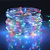 PowerKing Remote LED Timer String Lights Dimmable