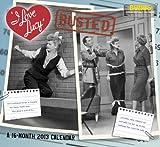 2013 I Love Lucy Wall Calendar