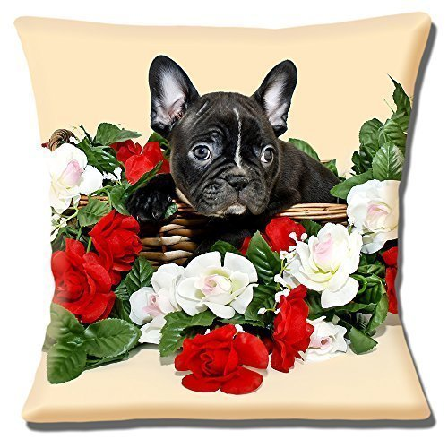 lindo cachorro bulldog francés FOTO Moteado Negro Flores ...