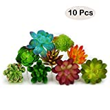 Nextnol 10pcs Artificial Succulents Plants Fake Succulents Wall Decoration DIY Materials (10 Different Kinds Plants)