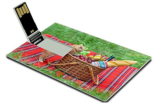 Luxlady 32GB USB Flash Drive 2.0 Memory Stick Credit Card Size Little kitten sniffing the picnic basket outdoors IMAGE 21170292