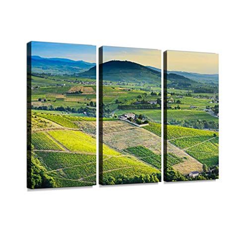 7houarts Brouilly Hill and Vineyards with Morning Lights in Beaujolais Land Canvas Wall Artwork Poster Modern Home Wall Unique Pattern Wall Decoration Stretched and Framed - 3 Piece ()