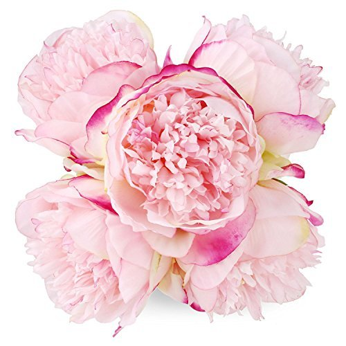 Silk Peony Bouquet 5 Heads Deep Pink SOLEDI Artificial Fake Flower Bunch Bouquet Bridal Bouquet Wedding Living Room Table Home Garden Decoration (Peony Flower Stems Silk)