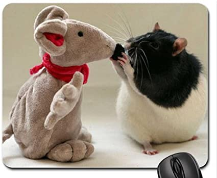 Rat And Toy Mouse Pad, Mousepad: Amazon.es: Electrónica