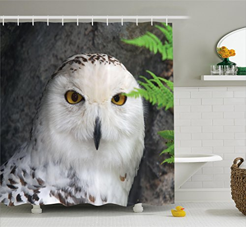 Wizard Shower Curtain Set by Ambesonne, White Owl Themed Animal Impressive Looks Green Leaves Amber Eyes Gift Witchcraft, Fabric Bathroom Decor with Hooks, 84 Inches Extra Long, White Green and Black (White And Owl Black Shower Curtain)
