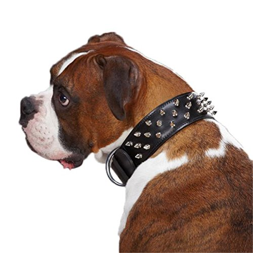 Casual Canine Leather Deluxe Spiked Dog Collar, 25-Inch, Black