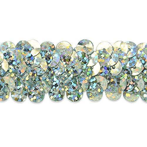 International Silver Starlight (Expo International 7/8-Inch 2-Row Starlight Hologram Stretch Sequin Trim Embellishment, 20-Yard, Silver)