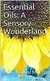 Essential Oils: A Sensory Wonderland