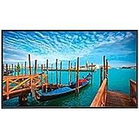 NEC Monitor V552-AVT Digital Signage Monitor - 55 LCD - 1920 x 1080 - Edge LED - 450 Nit - 1080p - HDMI - DVI - SerialEthernet (Certified Refurbished)