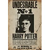 Harry Potter - Movie Poster / Print (Undesirable No. 1 - Wanted / Mugshot) (Size: 61cm x 91.5cm)
