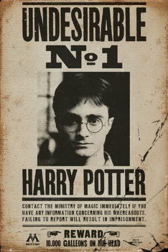 Amazon Com Harry Potter Movie Poster Print Harry Potter Wanted