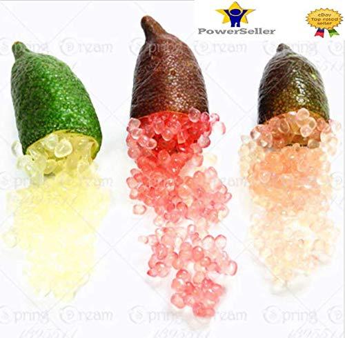 Portal Cool 3: 50Pcs Ice Finger Lime Seeds Citrus Caviar Tropical Fruit Tree Garden Semente
