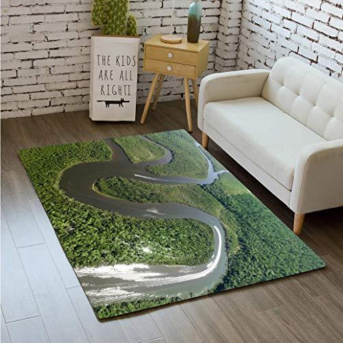 MTSJTliangwan 3D Printing Aerial View of a Rainforest in Brazil Bathroom Carpet Flannel Foam Shower mat Absorbent Living Room Kitchen Door Carpet Floor mat