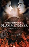 Transformation Im Flammenmeer (German Edition)