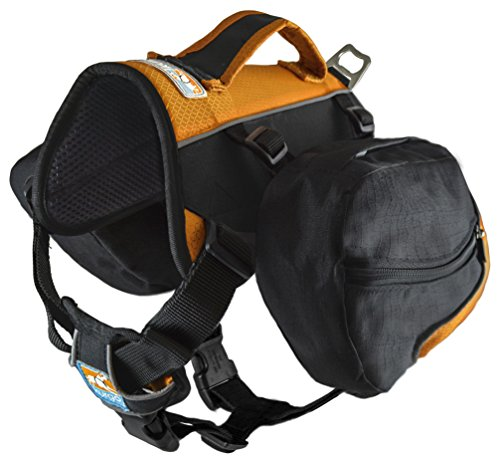 Kurgo Baxter Backpack Walking Camping
