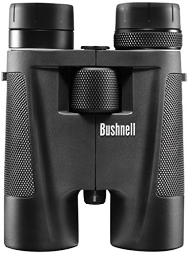 Bushnell 8 16 Powerview Prism Binocular product image