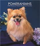 Pomeranians 2008 Hardcover Weekly Engagement Calendar
