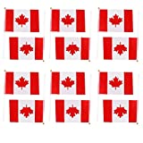 sea-junop Pack of 12 Hand Waving Canada Canadian National Flags Plastic Poles