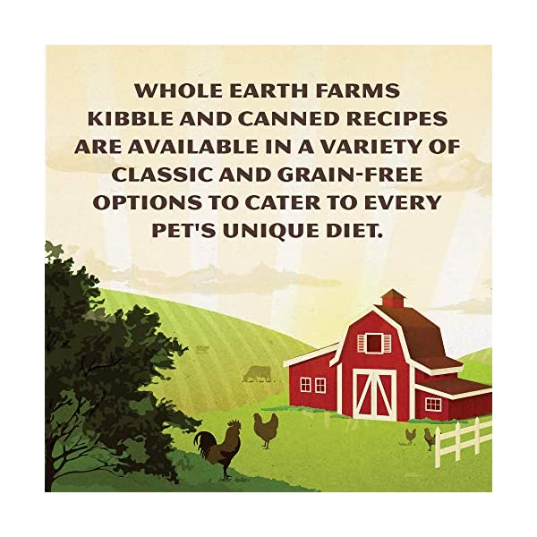 Whole Earth Farms Grain Free Wet Cat Food Pate Recipe, 24 Count