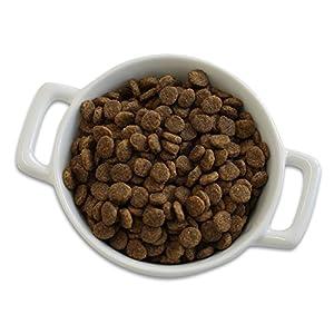 Castor & Pollux Organix Grain Free Organic Small Breed Recipe Dry Dog Food,  4 lb