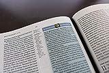 NKJV, Spirit-Filled Life Bible, Third