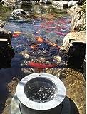 Helix Pond Skimmer