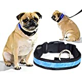 Biltek Blue LED Light Dog Collar - Large - Dog Pet Night Safety Fashionable Flashing Light Up Collar Nylon Large Adjustable