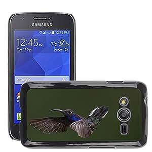 Etui Housse Coque de Protection Cover Rigide pour // M00114795 Animal Pájaro Colibrí Pequeño Poco // Samsung Galaxy Ace4 / Galaxy Ace 4 LTE / SM-G313F